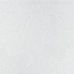 potolochnaya-plita-armstrong-retail.jpg